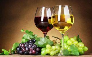 Простые рецепты домашнего вина из разных сортов винограда поэтапно