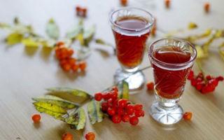 Рябина на водке — как приготовить в домашних условиях? Лечебные свойства и противопоказания к применению настойки