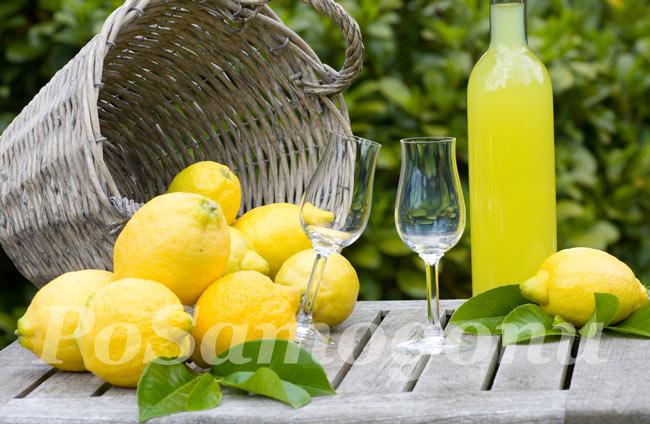 Лимончелло лимонный ликер дома