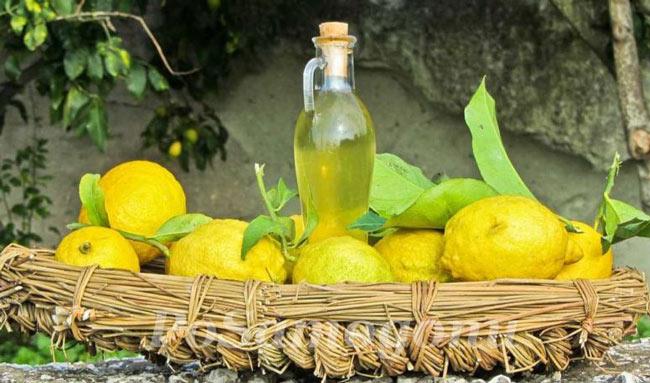 Лимончелло это лимонный ликер из лимонов