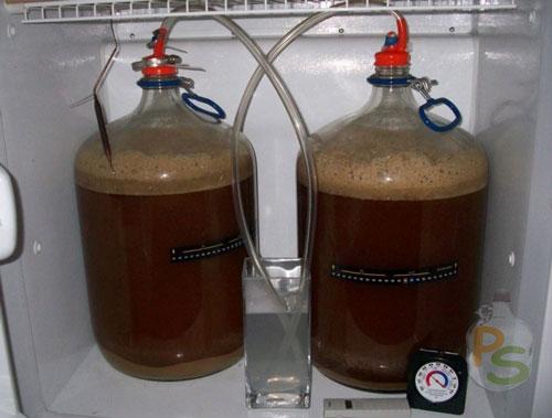 Процесс брожения пива