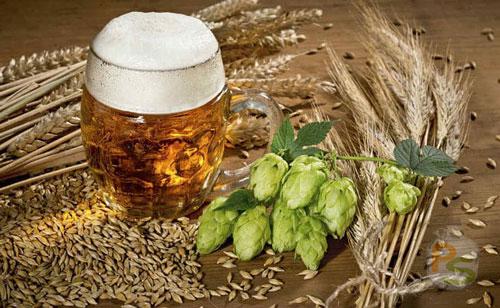 Ингредиенты для приготовления домашнего пива