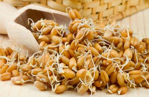 Пророщенное зерно для браги