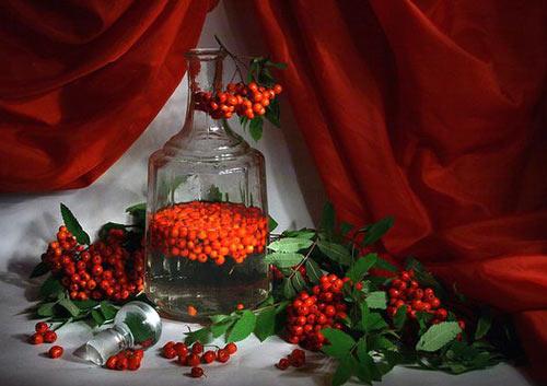 Вино из красной рябины в графине