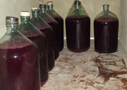Бутыли для брожения вина.