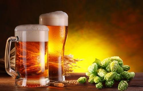 Пиво в кружке и хмель.