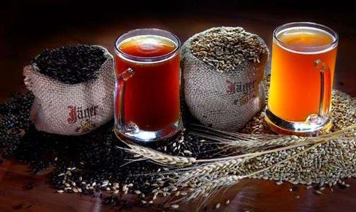 Ингредиенты для пива.