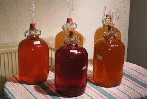 Вино в бродильных емкостях.