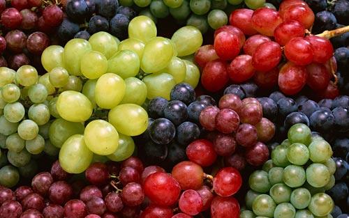Разные сорта винограда.